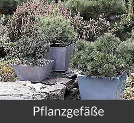 Gärtnerei Brinkmann in Oelde - Pflanzgefäße