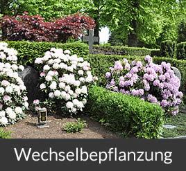 Gärtnerei Brinkmann Oelde - Wechselbepflanzung