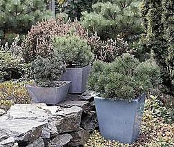 Binkmann Oelde - Gartengestaltung
