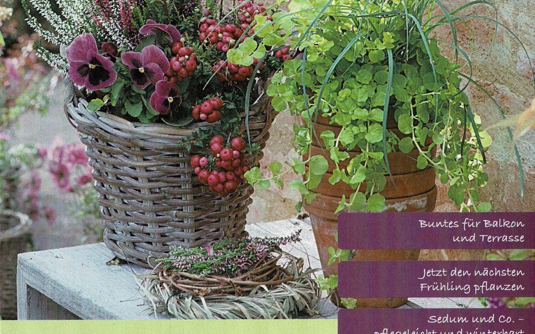 Ihr Gärtner-Herbst 2019
