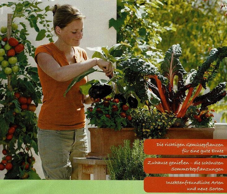 Ihr Gärtner Sommer 2020-1
