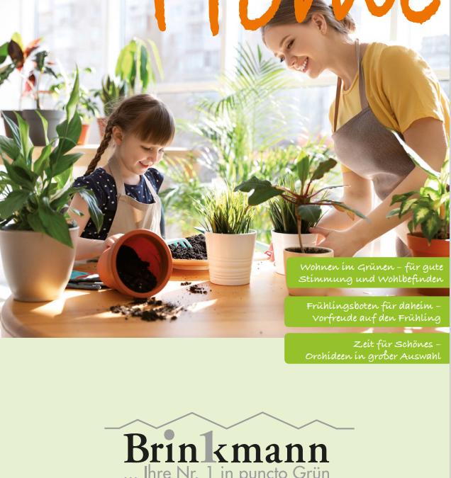 Ihr Gärtner Home – 2021