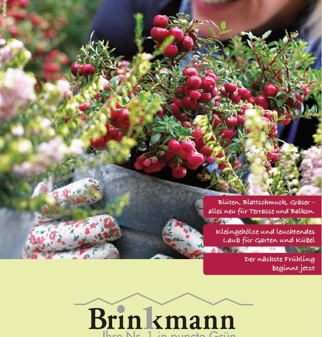 Ihr Gärtner – Herbst 2021